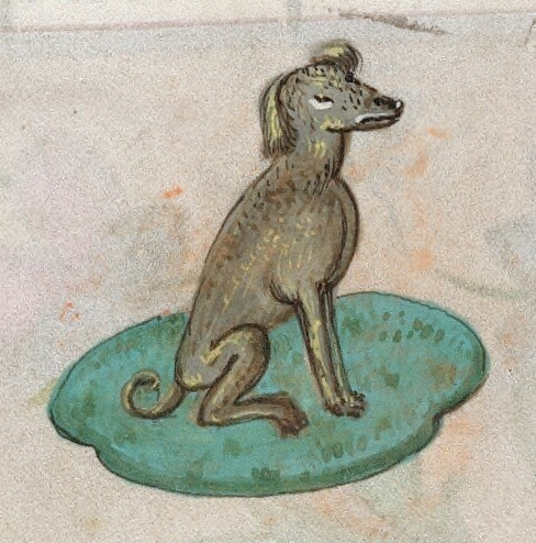 catriculan-hound-the-book-of-hours