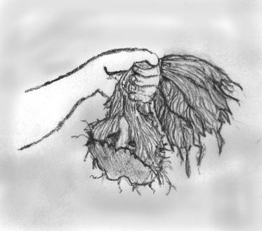 demonic-toupee
